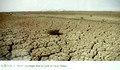 Parched saline soils where the eco-city is being built